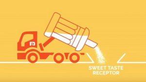 DouxMatok-sugar-reduction-technology-to-hit-market-in-2018_strict_xxl